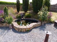 Large Fibreglass Pond