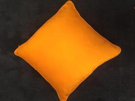 Immaculate silk cushion