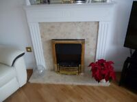 White surround with marble inlay, with electric coal effect fire