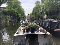 45 ft Narrowboat with Zone 1 London Mooring