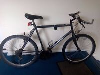 used bike, need adjustments