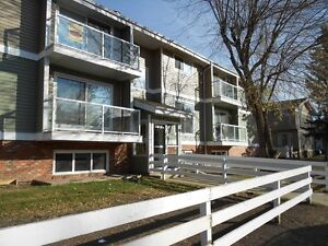 PETS OK! Renovated 2 bed Condo for only $850!!  FREE RENT!