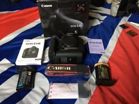 Canon 1 DX body plus extras