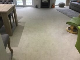 Cream Carpet 5m x 6m in very good condition