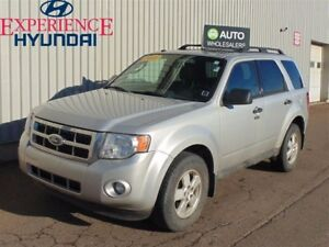 2009 Ford Escape XLT Automatic THIS WHOLESALE WILL BE SOLD AS-T