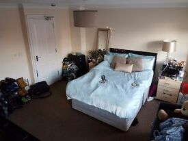 Large double room in student house, Hatfield. £488pm