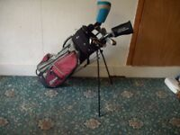 Golf Clubs and Bag By Wilson ID 17/10/17