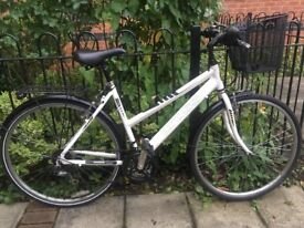 Cross - Adult Bike