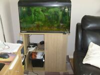 3FT FISH TANK CABINET AND ACCESSORIES