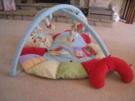 Softly Snail Multi Activity Playmat & Gym