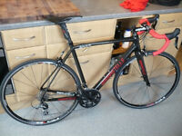 Beautiful Barbastelle Full Carbon Fibre Road Bike with Full Shimano 105 groupset.(54 cms).