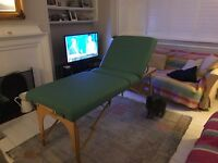 Custom Craftwork Spa Professional Acupuncture Massage Table with Head Rest