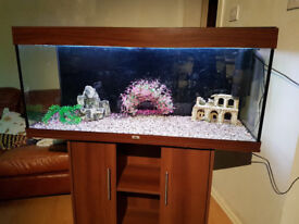 4ft 260 liter JUWEL RIO FISH TANK AND STAND FULL SET UP