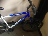 Cycle/ mountain bike £55ono