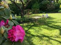 Gardening and Landscaping in SW London