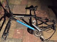 Mountain bike frame takes discs
