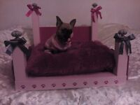 !!!!!!!!!!!!PRINCESS THE STUNNING CHIHUAHUA FOR SALE !!!!!!!!!!!!!!!!!!