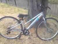 Apollo hybrid bike