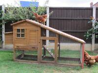 Chicken coop £50 no offers