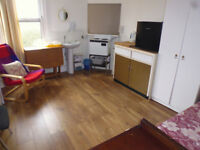 Large clean Studio/ Bedsit Room. Bills Included. Shared bathroom. 5mins walk to Clapham South