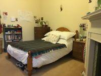 DOUBLE ROOM IN LOVELY BRUNTSFIELD FLAT