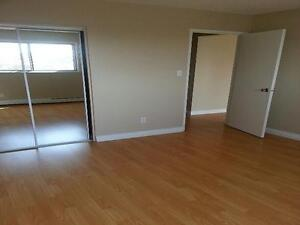 Lovinac Manor Apartments - One Bedroom Apartment for Rent Edmonton Edmonton Area image 4