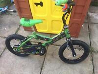 Boys bike TMNT ages 4+