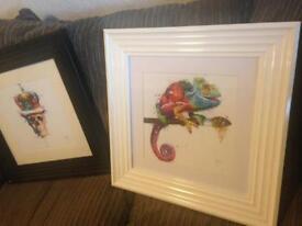 Chameleon white gloss frame print