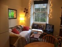 Double room in 3 bed flat near Meadows