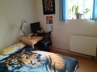 Bright, cosy room in Fulham