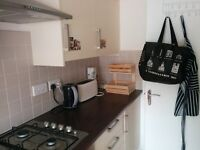 Spacious double room in comfortable 2-bed flat.
