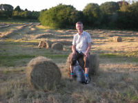 Hay from our fields plus an orchard, unsprayed mixed grass hay for horse, pony, pets. Horses love it