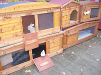 "rabbit hutch 48""wide robust plus all sizes wort viewing from £35.00"