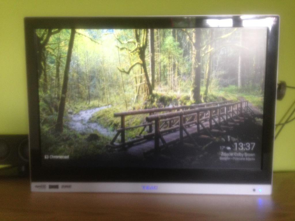 """TV Flatscreen 19"""" Freeview HD DVD built"""