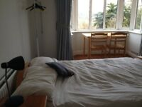 Large double room to rent in family home