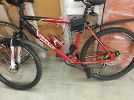 Adults bike