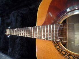 EKO - Acoustic Guitar