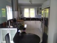 Complete Modern White Kitchen with Black Sparkle Composite Stone Worktop - Pristine Condition