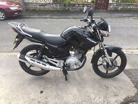 Yamaha YBR 125 in immaculate condition a genuine bike.