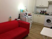 Spacious one bed flat, very close to tube and busses!