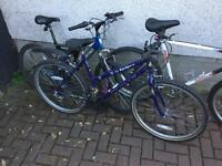 3 Mountain Bikes