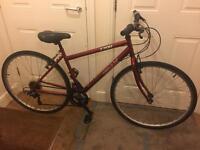 Lady's hybrid bike