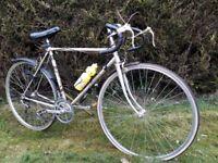 Triumph 21 in. 10 speed road bike