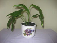 Plant pot holder with Peace Lily