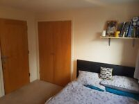 Clean Double Room to rent in St. Marks Heights, Lamberts Road, Surbiton KT5. All Bills Included.