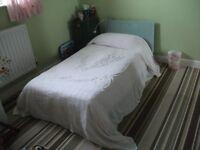 Single White Candlewick Bedspread - Vintage Bedspread