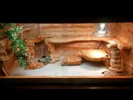 vivarium ( collection only)