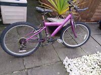 Girls Diamond Freespirit bike - suit 10 to 16yr old