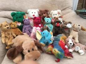 Beanie buddy and babies for sale