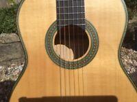 Flamenco Guitar handmade concert 1A : Vassilis Lazarides